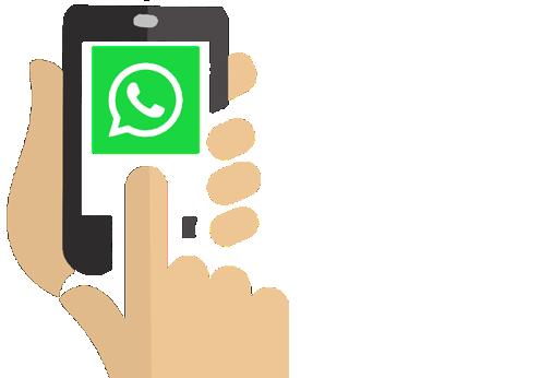 Ordina Tramite WhatsApp